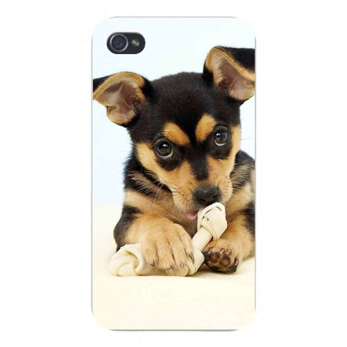 Apple Iphone Custom Case 4 4s Snap on - Cute Puppy Dog Chewing on Bone w/ Ears Perked Laying Down](Custom Iphone 4 Case)