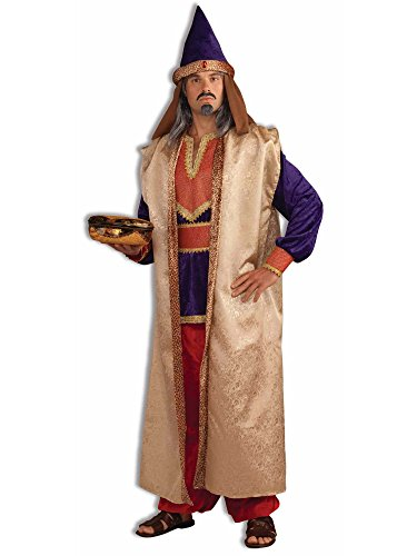 Wise Men Costumes (Forum Novelties Men's Deluxe Garnet Wise Man Costume, Multi, One Size)