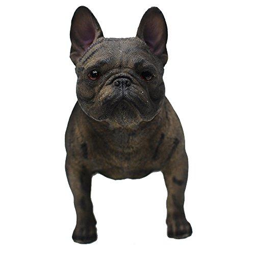 french bulldog birthday - 4