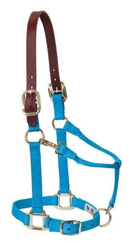 Weaver Leather Nylon Adjustable Breakaway Horse Halter, Average, Hurricane ()