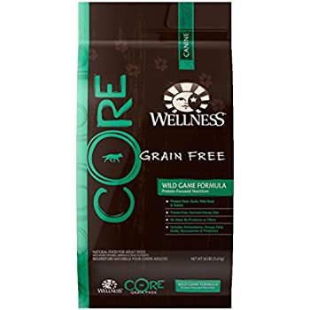 Wellness CORE Natural Grain Free Dry Dog Food, Wild Game Duck, Turkey, Boar & Rabbit, 26-Pound Bag