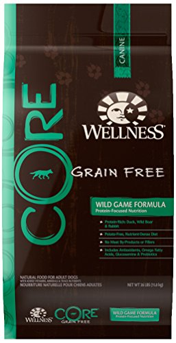 Wellness CORE Natural Grain Free Dry Dog Food, Wild Game Duck, Turkey, Boar & Rabbit, 26-Pound ()