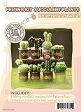 Succulent Cactus Plant Wool Felting Kit in Glass Pots