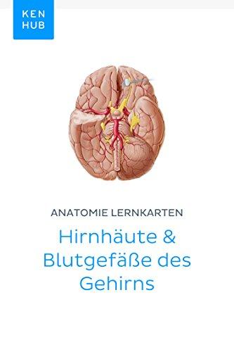 Anatomie Lernkarten: Hirnhäute & Blutgefäße des Gehirns: Lerne alle ...
