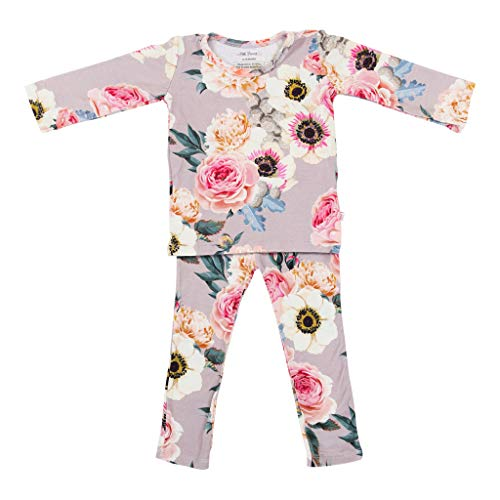 Two Piece Baby Pajamas Set - Loungewear Buttery Soft Viscose from Bamboo - Premium Knit Baby Girl Clothes (4T, French Gray)