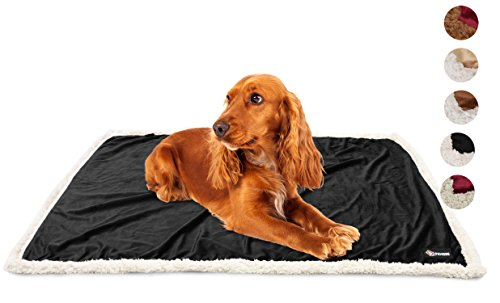 Puppy Blanket,Super Soft Sherpa Dog Blankets and Throws Cat Fleece Sleeping Mat for Pet Small Animals 45x30 Black by Pawsse (Image #2)
