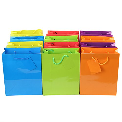 Tytroy Bright Neon Colored Party Present Paper Gift Bags Bir