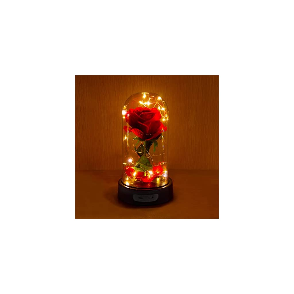 ucho-Beauty-and-The-Beast-RoseEnchanted-Red-Silk-Rose-Lamp-with-Fallen-Petals-Last-Forever-LED-Fairy-StringBest-Gift-for-HerValentines-Day-Wedding-Anniversary
