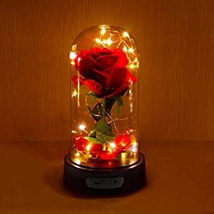 ucho Beauty and The Beast Rose,Enchanted Rose Lamp with Petals Last Forever & LED Light,Forever Rose in Dome for Home Decor Holiday Party Anniversary Wedding 79