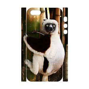 3D Bumper Plastic Case Of Cat customized case For iPhone 5 5s