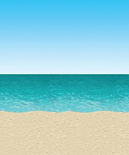 Ocean & Beach Backdrop Party Accessory (1 count) (Beach Party Accessories)