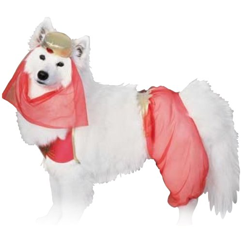 Harem Dog Pet Costume - Large - Pet (Homemade Dog Halloween Costume Ideas)