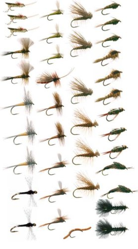 Western Trout Fly Fishing Flies Collection 39 Flies and Fly Box by Discountflies