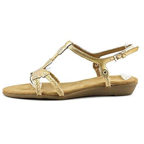 f468a138597d Aerosoles Women s World Chlass Sandal - Buy Online in Qatar ...