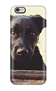 Best 3392412K33253427 High Impact Dirt/shock Proof Case Cover For Iphone 6 Plus (cute Black Dog)