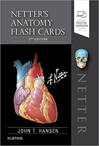 Netters Anatomy Flash Cards Netter Basic Science 9780323530507