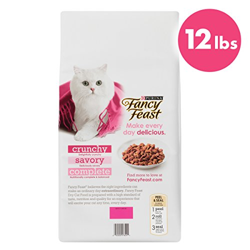 Purina Fancy Feast Adult Dry Cat Food 3