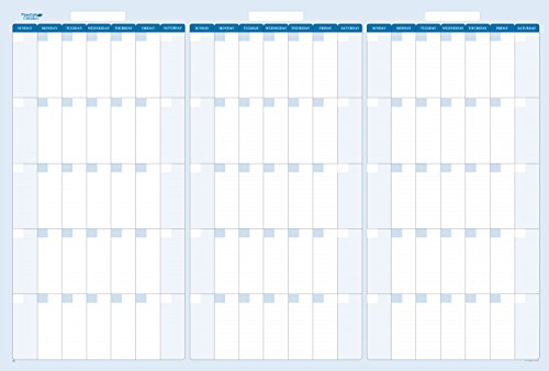90-Day Quarterly Dry and Wet Erasable Calendars by PlanetSafe Calendars. Best in It's Class. Non-ghosting, Non Staining (Horizontal 32