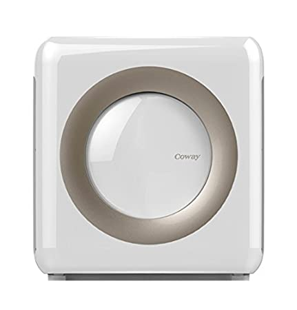 The 8 best air purifier coway
