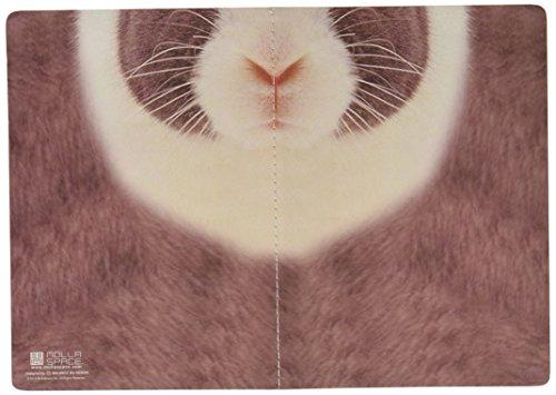 Sniffing Rabbit - 3