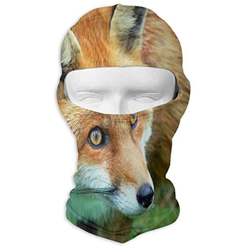 Price comparison product image Balaclava Red Fox Full Face Masks Ski Headwear Motorcycle Hood for Cycling Sports Snowboard