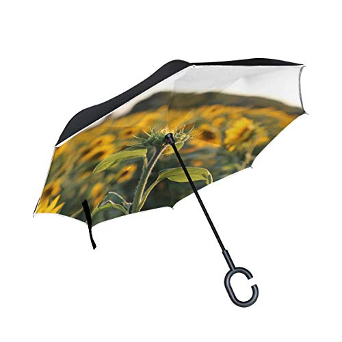 (RYUIFI Double Layer Inverted Sunflower Provence Light Umbrellas Reverse Folding Umbrella Windproof Uv Protection Big Straight Umbrella for Car Rain Outdoor with C-Shaped Handle)