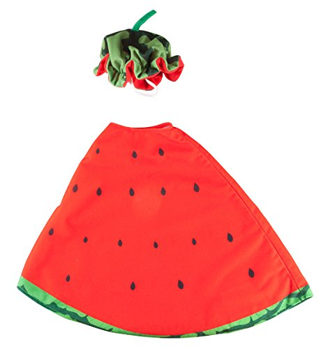 Fox Valley Traders Watermelon Slice Goose Outfit