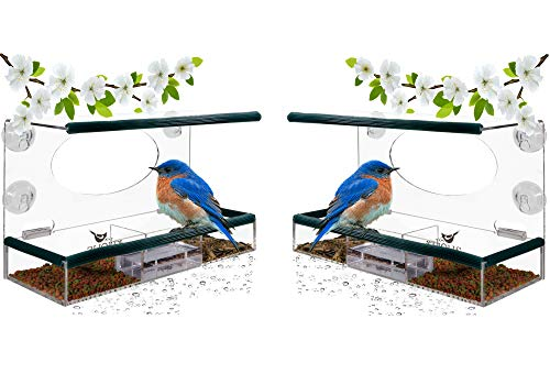 - Birdious 2-Pack Wild Window Bird Feeders: Enjoy Unique Watch Small & Large Birds. Clear See Through Birdfeeder; Easy Mounted 4 Strong Suction Cups. Unusual Gifts for Kids Love