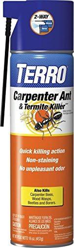 Amazon Com Terro 16 Oz Carpenter Ant Termite Killer Aerosol Spray Terro Ant Killer Spray Garden Outdoor