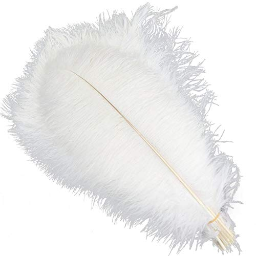 Sowder 5pcs Ostrich Feathers 16-18inch(40-45cm) Home Wedding Decoration(White) ()