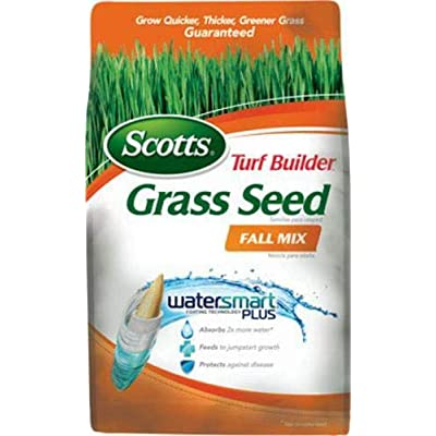 Scotts 18287 Turf Builder Fall Grass Seed, 1200 sq, 3 lbs : Garden & Outdoor