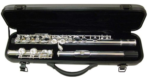 Signature Music Open Hole Silver Low C Flute 16 Holes 2820S by Signature Music Instruments