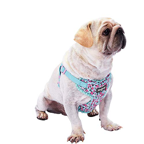 Blueberry Pet 6 Patterns Soft & Comfy Spring Made Well Cute Floral No Pull Mesh Dog Harness Vest in Light Blue, Chest Girth 17.5