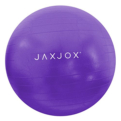 JAXJOX Balance Stability Gym/Swiss Ball 65cm (pump included), Purple