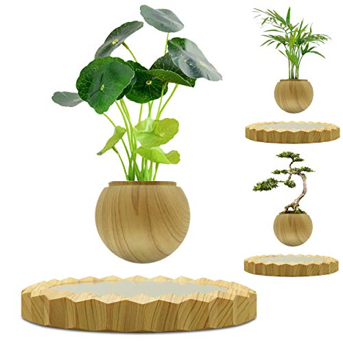 Floating Wooden Bonsai Pot for Home and Office Decor-Levitation air Bonsai for Children Gifts and Desk Decor