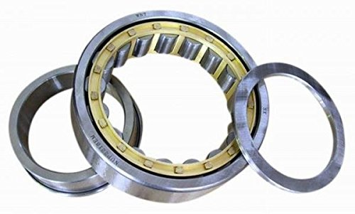 Single Row C3 Clearance 42mm Width Schaeffler Technologies Co. Straight Bore Removable Inner Ring Two Piece 250mm OD Metric FAG NUP228E-M1-C3 Cylindrical Roller Bearing 140mm ID High Capacity