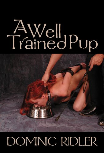 A Well Trained Pup
