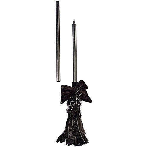 Forum Novelties Black Feather Witch