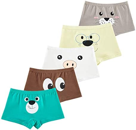 CHUNG Little Big Boys Soft Modal Cotton Boxer Briefs Underwear 5 Pack Dinasaur 3-9Y
