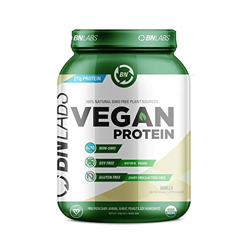 Organic Vegan Protein Powder - 27g Protein, RAW, Certified Organic, Non-GMO, Fully Natural Plant Based - No Dairy, Gluten or Soy - Low Carb, No Sugar - Made in USA (15 Serving, Vanilla)