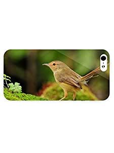 3d Full Wrap Case For Sam Sung Note 2 Cover Animal Bird On Moss