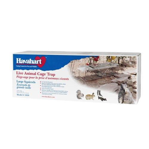 Image of Havahart 1030 Live Animal Two-Door Rabbit, Squirrel, Skunk, and Mink Cage Trap