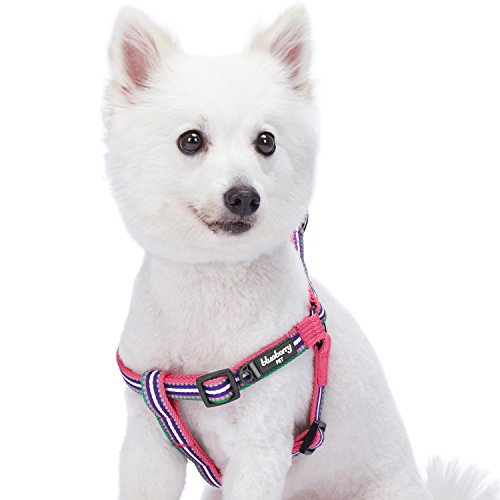 Blueberry Pet 5 Colors Step-in 3M Reflective Multi-Colored Stripe Padded Dog Harness, Chest Girth 20 - 26, Pink, Emerald & Orchid, Medium, Adjustable Harnesses for Dogs