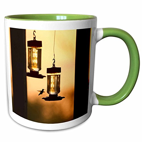 3dRose Danita Delimont - Birds - Hummingbirds at feeder before sunrise, Texas, USA - US44 LDI0952 - Larry Ditto - 15oz Two-Tone Green Mug (mug_147051_12) (15 Ounce Hummingbird Feeder)