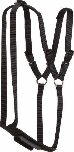 (Weaver Leather Nylon Ram Marking Harness)
