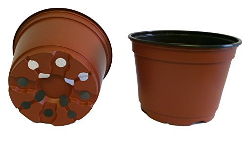 lastic Nursery Pots - Azalea Style ~ Pots ARE 6 Inch Round At the Top and 4.25 Inch Deep. Color : Terracotta (Deep Terra Cotta)