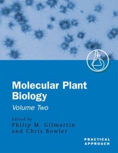 Molecular Plant Biology Volume 2