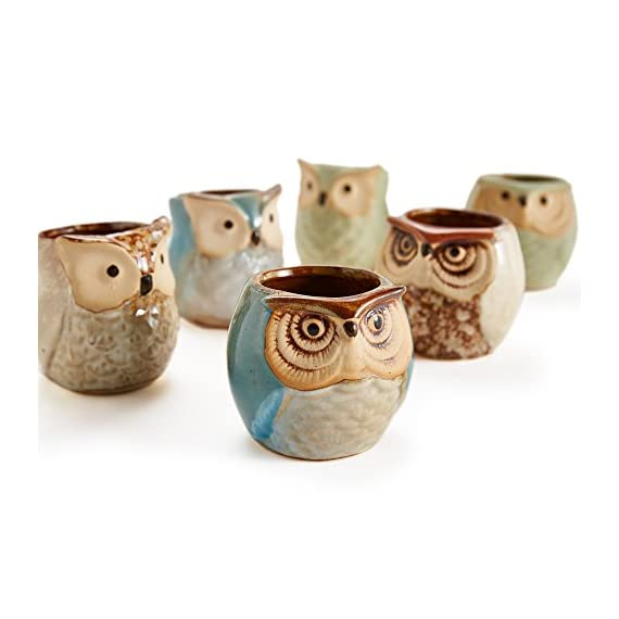 Sun-E 2.5 Inch Owl Pot Ceramic Flowing Glaze Base Serial Set Succulent Plant Pot Cactus Plant Pot Flower Pot Container Planter Bonsai Pots with A Hole Perfect Gift Idea 6 in Set 5 New SUN-E collections!OWL OWL OWL!!!Ideal for adding a dash of refreshingly modern design to your home,Great Gift - this ceramic pot can serve a variety of purposes. Perfect gift for family and friends who love succulent plants with a green thumb or keep it in your own home for a touch of clean, modern style in your living space. Material:Ceramic(Made of top-quality clay and baked in high temperatures);Package content:6pcs*Pot. Approximate Size: 2.2 x 2.2 x 2.4 inch (L x W x H).