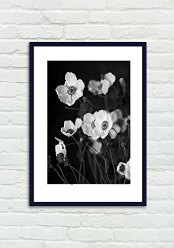 White Anemone Fine Art Flower Photography, Black and White Floral Art, Botanical Print 5x7, 8x10, 11x14, 12x16, 12x18, 16x20, 16x24, 18x24 Office or Powder Room Vertical Wall Decor