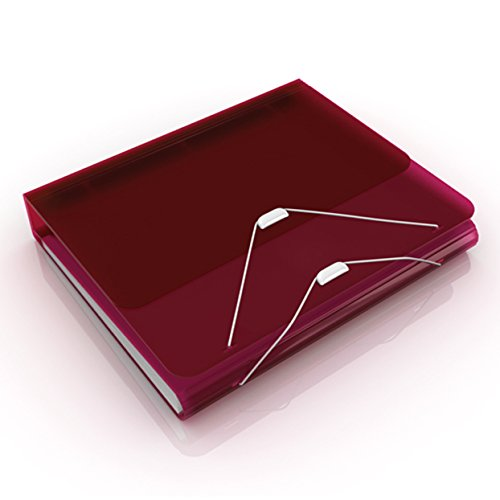 Samsill DUO 2-in-1 Document and File Organizer, 1 Inch 3 Ring Binder + 7 Pocket Accordion / Expanding File, Burgundy
